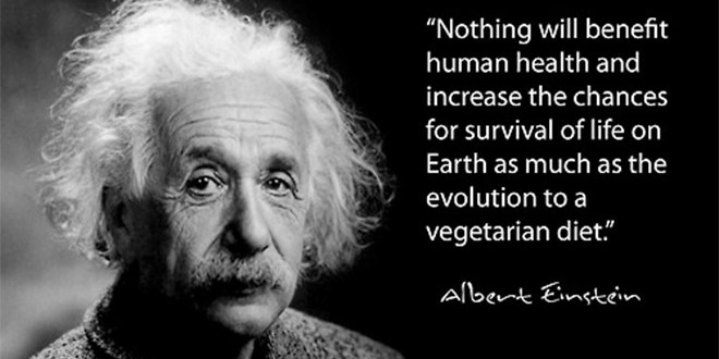 Vegetarian-quote-Einstein-660x330